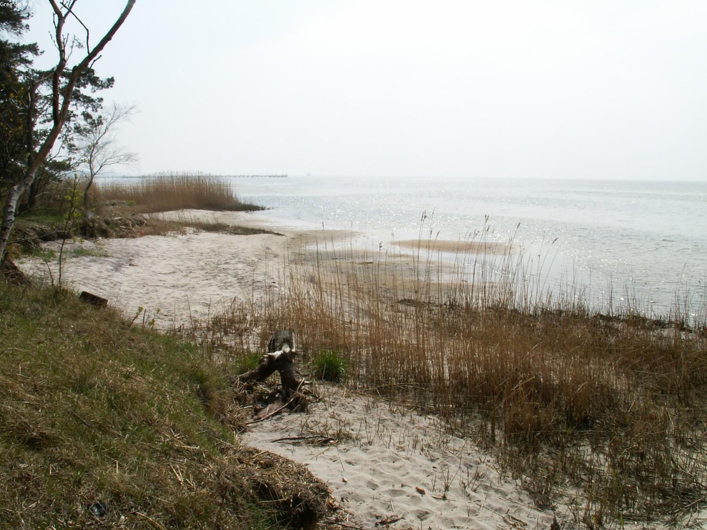 Jastarnia i Zatoka Pucka 2005